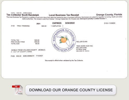 Licenses permits florida fishing license share the for Non resident florida fishing license