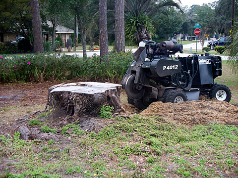 Remote grinder with stump