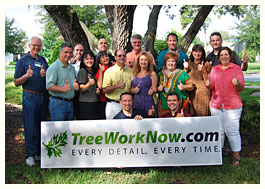 tree work now team